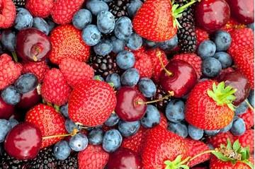 Comment cultiver des petits fruits rouges - Comment cueillir des fraises ...