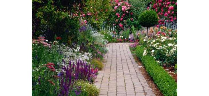comment choisir les plantes pour fleurir une all e. Black Bedroom Furniture Sets. Home Design Ideas