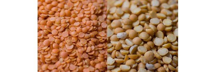 88037436a8bafe Comment et quand cultiver la lentille   ❤️