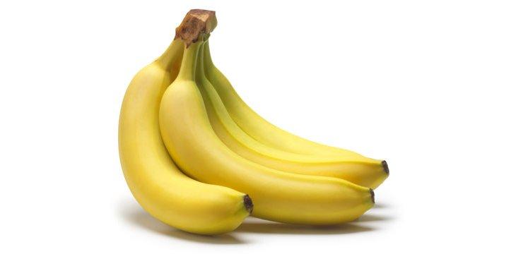 Comment cultiver le bananier - Comment planter un bananier ...