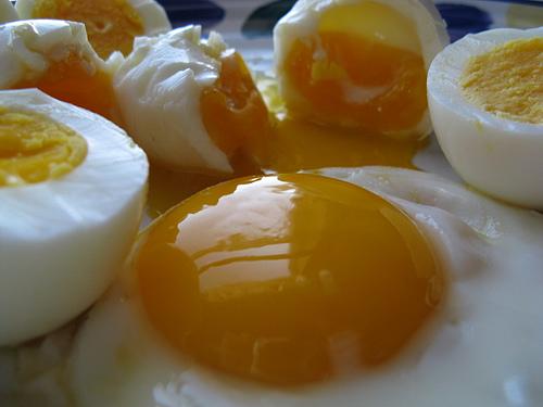 Les œufs, un apport en protéines efficace